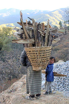 Carrying Wood in Bhutan